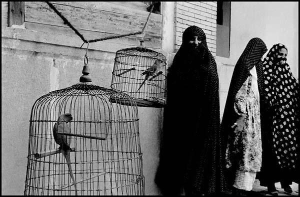 FOTO 3 De la Perse à l'Iraq.jpg
