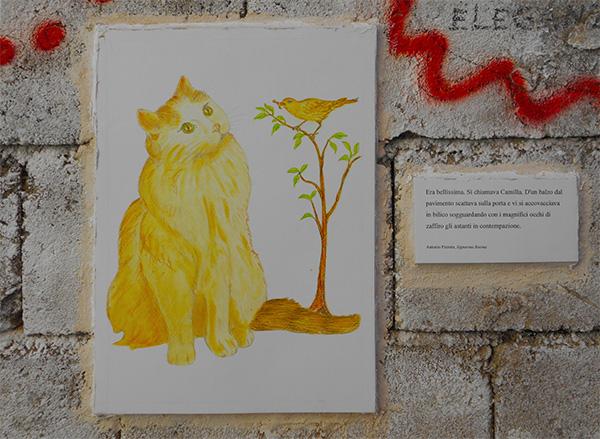 FOTO 3. Posada-la gatta da Signorina Rosina di Antonio Pizzuto