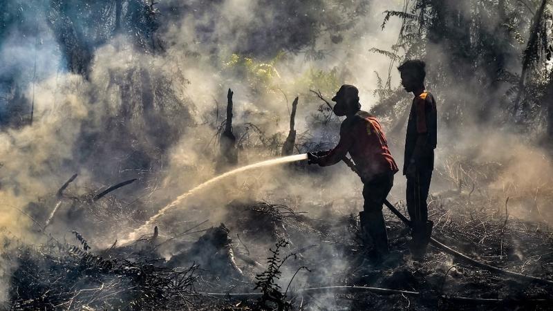 Foto 3. Il fuoco in Indonesia.Credit. Wahyudi Afp