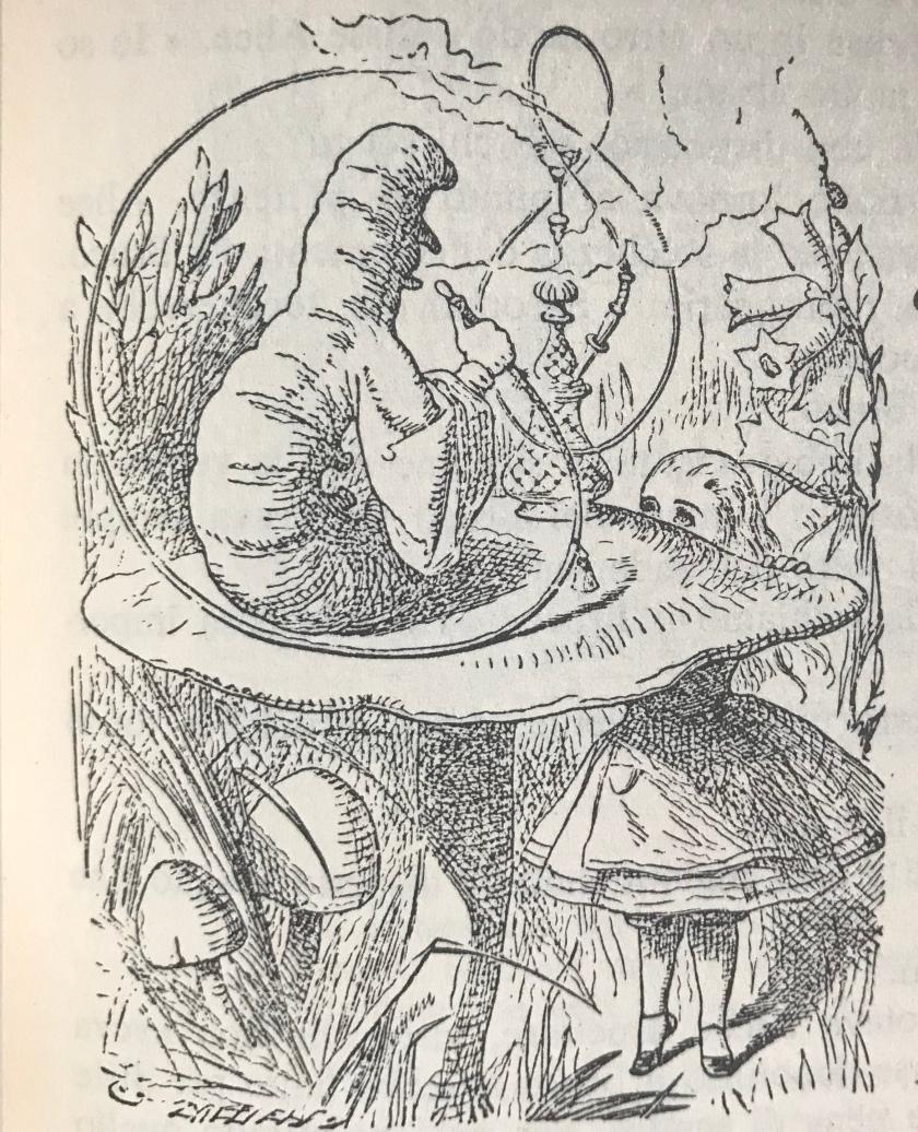 3. Alice e il bruco
