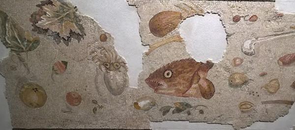 Aquileia. Museo Archeologico Nazionale. Mosaico del pavimento non spazzato (particolare)