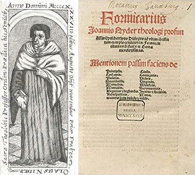 FOTO 3. Formicarius