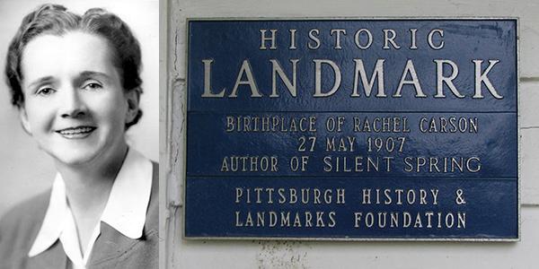 Foto1. Rachel Carson in una foto del 1940. A destra, la targa commemorativa apposta sulla sua casa, qualificata come National Historic Landmark